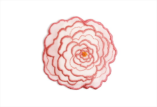 SACHET BOTANICAL ROSE