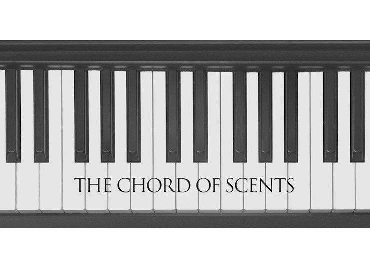 2018 INCENSE SERIES 「THE CHORD OF SCENTS」第一弾発売